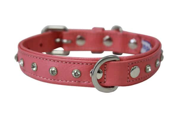 Angel Athens leather diamond dog collar