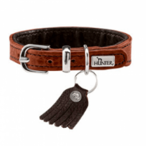 Hunter Bison leather dog collar