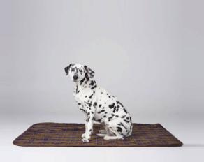 Barbour tartan dog blanket