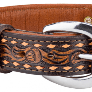 Angel Tuscon Argentinean leather dog collar