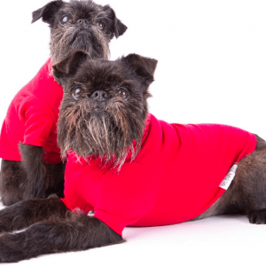 Mr Soft Top dog Merino Red Devil