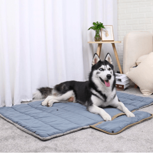 Luxury plush folding pet blanket