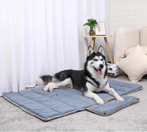 Luxury plush folding pet blanket