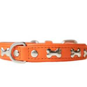 Angel Rotterdam Bones leather collar Gold fish orange