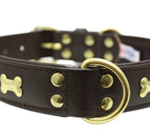 Angel Rotterdam Bones leather collar brown with solid brass bones
