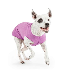 Gold Paw Sun Shield dog tee sun protection.