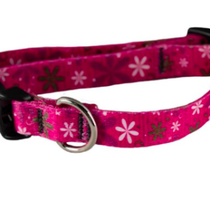 Cycle dog dog collar eco weave Pink Retro Flowers for small dogs