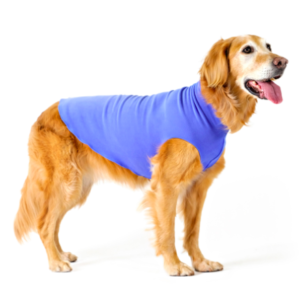 Goldpaw stretch fleece dog wear