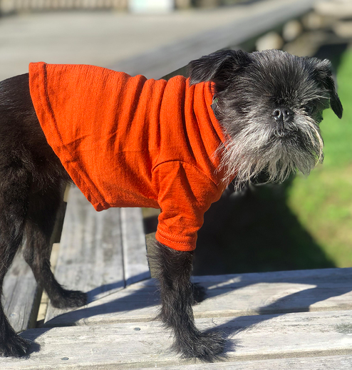 Mr Soft Top dog Merino Tee Burnt Orange