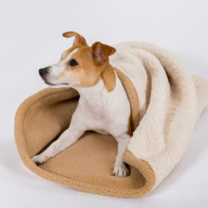 Tall Tails 3-in-1 Burrow bed